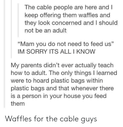 "Parents, Sorry, and House: The cable people are here and I  keep offering them waffles and  they look concerned and I should  not be an adult  ""Mam you do not need to feed us""  IM SORRY ITS ALL I KNOW  My parents didn't ever actually teach  how to adult. The only things I learned  were to hoard plastic bags within  plastic bags and that whenever there  is a person in your house you feed  them Waffles for the cable guys"