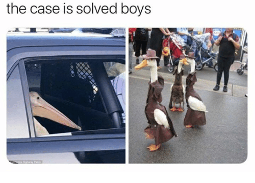 Boys, Case, and The: the case is solved boys