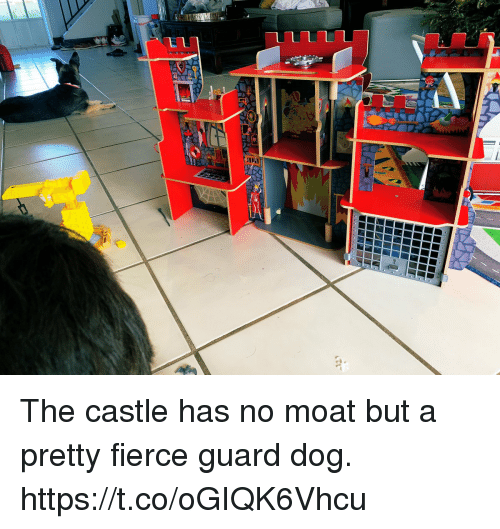 Memes, The Castle, and 🤖: The castle has no moat but a pretty fierce guard dog. https://t.co/oGIQK6Vhcu