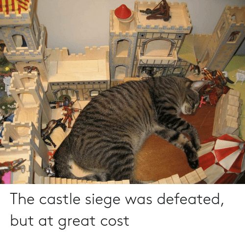 The Castle, Castle, and Great: The castle siege was defeated, but at great cost