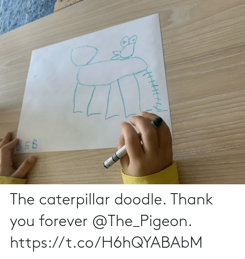 Forever: The caterpillar doodle. Thank you forever @The_Pigeon. https://t.co/H6hQYABAbM