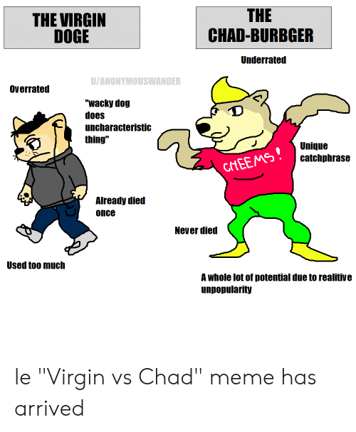 "Doge, Meme, and Too Much: THE  CHAD-BURBGER  THE VIRGIN  DOGE  Underrated  U/ANONYMOUSWANDER  Overrated  ""wacky dog  does  uncharacteristic  thing""  Unique  catchphrase  CHEEMS!  Already died  once  Never died  Used too much  A whole lot of potential due to realitive  unpopularity le ""Virgin vs Chad"" meme has arrived"
