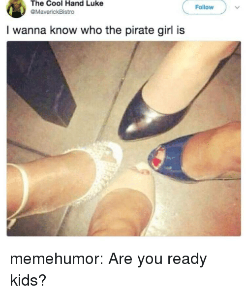 Tumblr, Blog, and Cool: The Cool Hand Luke  Follow  MaverickBistro  I wanna know who the pirate girl is memehumor:  Are you ready kids?