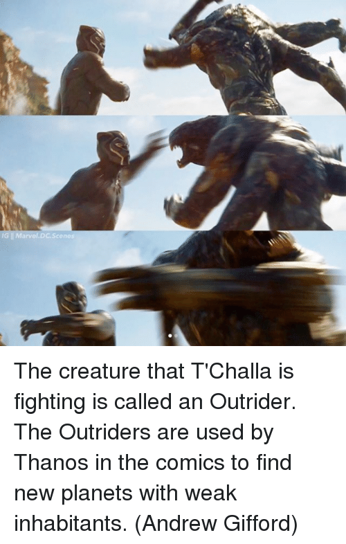 Memes, Planets, and Thanos: The creature that T'Challa is fighting is called an Outrider. The Outriders are used by Thanos in the comics to find new planets with weak inhabitants.  (Andrew Gifford)
