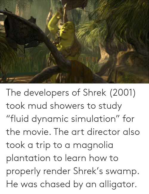 """mud: The developers of Shrek (2001) took mud showers to study """"fluid dynamic simulation"""" for the movie. The art director also took a trip to a magnolia plantation to learn how to properly render Shrek's swamp. He was chased by an alligator."""