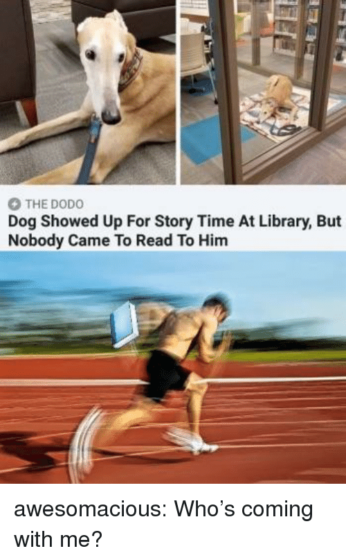 Story Time: THE DODO  Dog Showed Up For Story Time At Library, But  Nobody Came To Read To Him awesomacious:  Who's coming with me?