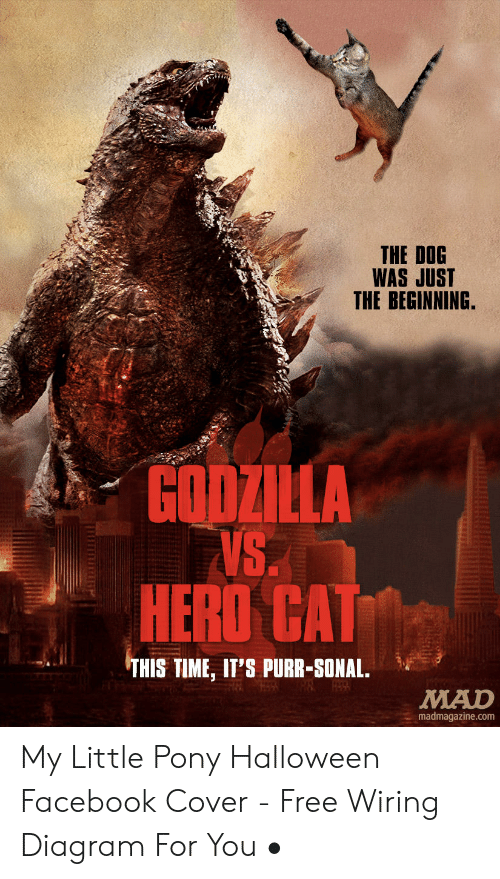 The DOG WAS JUST THE BEGINNING GODZILLA VS HERO CAT THIS