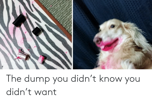 T Know: The dump you didn't know you didn't want