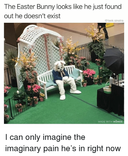 Easter, Funny, and Pain: The Easter Bunny looks like he just found  out he doesn't exist  @tank.sinatra  MADE WITH MOMUS I can only imagine the imaginary pain he's in right now