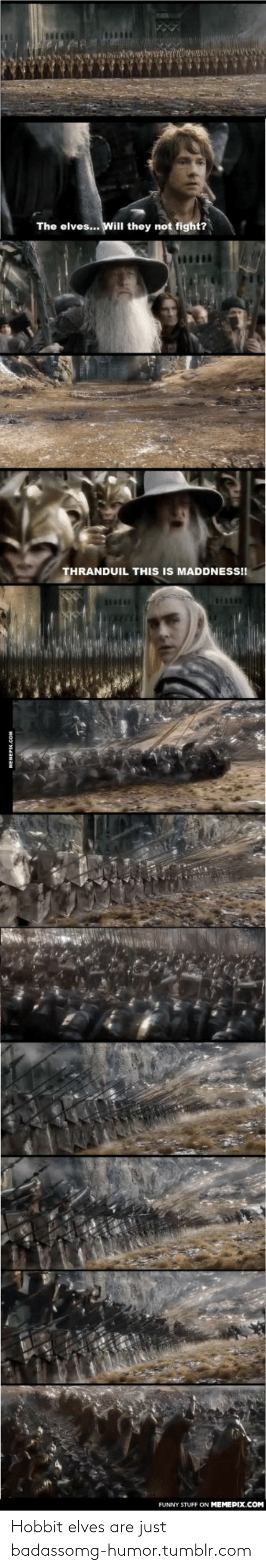 thranduil: The elves... Will they not fight?  THRANDUIL THIS IS MADDNESS!!  FUNNY STUFF ON MEMEPIX.COM Hobbit elves are just badassomg-humor.tumblr.com