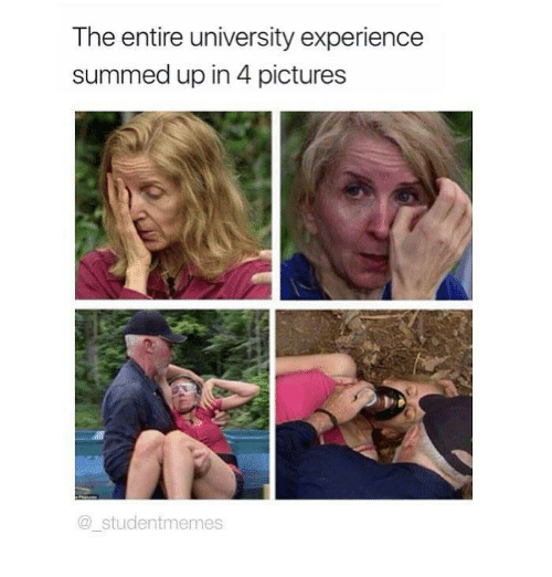 Summed Up: The entire university experience  summed up in 4 pictures  @studentmemes