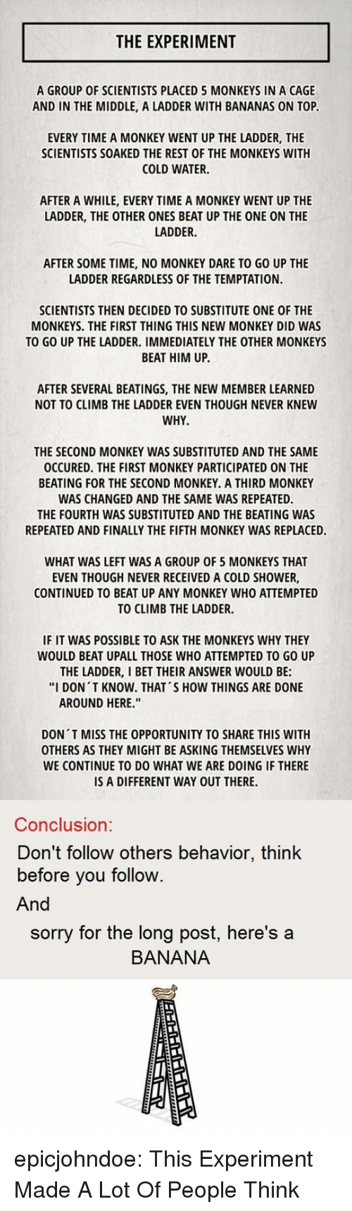 """Repeated: THE EXPERIMENT  A GROUP OF SCIENTISTS PLACED 5 MONKEYS IN A CAGE  AND IN THE MIDDLE, A LADDER WITH BANANAS ON TOP  EVERY TIME A MONKEY WENT UP THE LADDER, THE  SCIENTISTS SOAKED THE REST OF THE MONKEYS WITH  COLD WATER.  AFTER A WHILE, EVERY TIME A MONKEY WENT UP THE  LADDER, THE OTHER ONES BEAT UP THE ONE ON THE  LADDER.  AFTER SOME TIME, NO MONKEY DARE TO GO UP THE  LADDER REGARDLESS OF THE TEMPTATION.  SCIENTISTS THEN DECIDED TO SUBSTITUTE ONE OF THE  MONKEYS. THE FIRST THING THIS NEW MONKEY DID WAS  TO GO UP THE LADDER. IMMEDIATELY THE OTHER MONKEYS  BEAT HIM UP.  AFTER SEVERAL BEATINGS, THE NEW MEMBER LEARNED  NOT TO CLIMB THE LADDER EVEN THOUGH NEVER KNEW  WHY  THE SECOND MONKEY WAS SUBSTITUTED AND THE SAME  OCCURED. THE FIRST MONKEY PARTICIPATED ON THE  BEATING FOR THE SECOND MONKEY. A THIRD MONKEY  WAS CHANGED AND THE SAME WAS REPEATED.  THE FOURTH WAS SUBSTITUTED AND THE BEATING WAS  REPEATED AND FINALLY THE FIFTH MONKEY WAS REPLACED.  WHAT WAS LEFT WAS A GROUP OF 5 MONKEYS THAT  EVEN THOUGH NEVER RECEIVED A COLD SHOWER,  CONTINUED TO BEAT UP ANY MONKEY WHO ATTEMPTED  TO CLIMB THE LADDER.  IF IT WAS POSSIBLE TO ASK THE MONKEYS WHY THEY  WOULD BEAT UPALL THOSE WHO ATTEMPTED TO GO UP  THE LADDER, I BET THEIR ANSWER WOULD BE:  """"I DON T KNOW. THAT'S HOW THINGS ARE DONE  AROUND HERE.""""  DON T MISS THE OPPORTUNITY TO SHARE THIS WITH  OTHERS AS THEY MIGHT BE ASKING THEMSELVES WHY  WE CONTINUE TO DO WHAT WE ARE DOING IF THERE  IS A DIFFERENT WAY OUT THERE.  Conclusion:  Don't follow others behavior, think  before you follow.  And  sorry for the long post, here's a  BANANA epicjohndoe:  This Experiment Made A Lot Of People Think"""