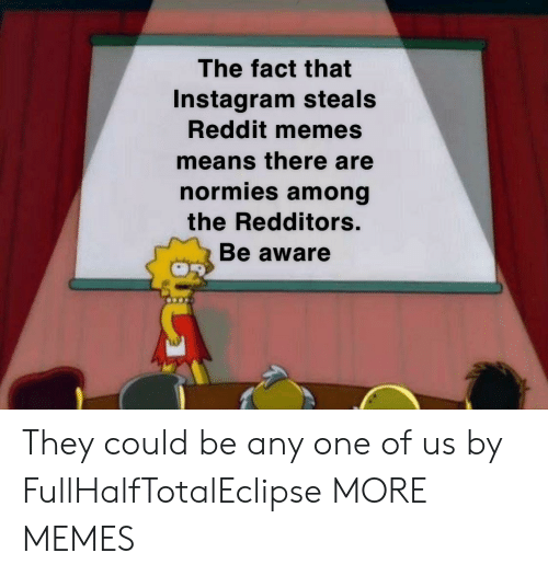 Reddit Memes: The fact that  Instagram steals  Reddit memes  means there are  normies among  the Redditors.  Be aware They could be any one of us by FullHalfTotalEclipse MORE MEMES