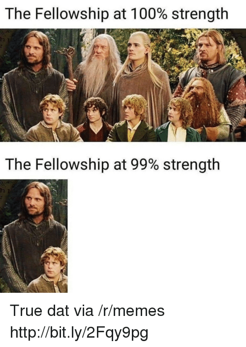 Anaconda, Memes, and True: The Fellowship at 100% strength  The Fellowship at 99% strength  12 True dat via /r/memes http://bit.ly/2Fqy9pg