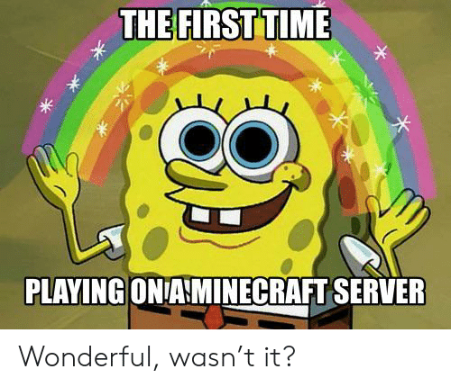 Time, Server, and First: THE FIRST TIME  *  PLAYING ON AMINECRAFT SERVER Wonderful, wasn't it?