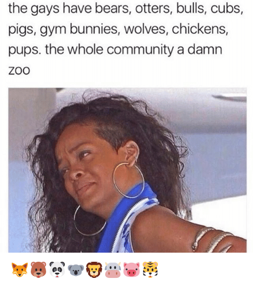 Bunnies, Community, and Gym: the gays have bears, otters, bulls, cubs,  pigs, gym bunnies, wolves, chickens,  pups. the whole community a damn  ZOO 🦊🐻🐼🐨🦁🐮🐷🐯