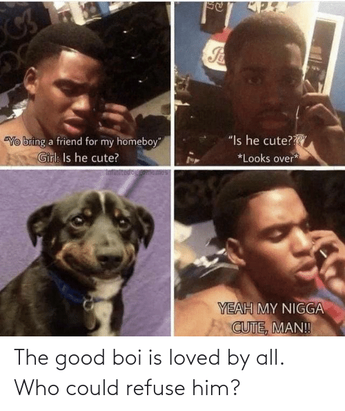 him: The good boi is loved by all. Who could refuse him?