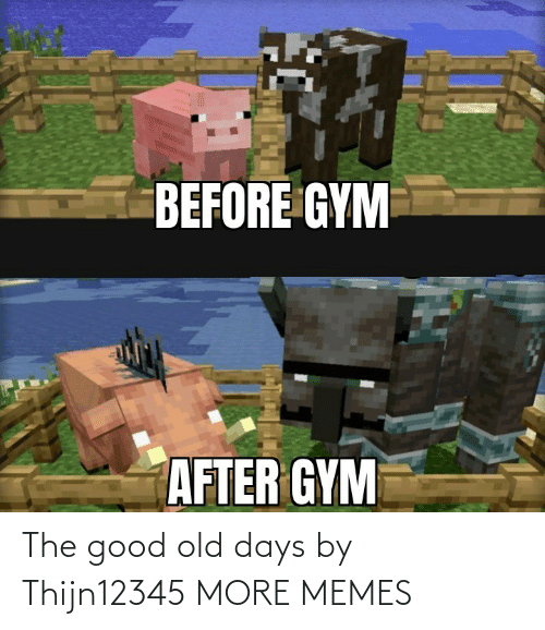 Old: The good old days by Thijn12345 MORE MEMES