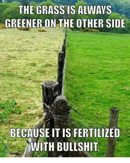 Grass Is Always Greener: THE GRASS IS ALWAYS  GREENER ON THE OTHER SIDE  BECAUSE ITIS FERTILIZED  WITH BULLSHIT