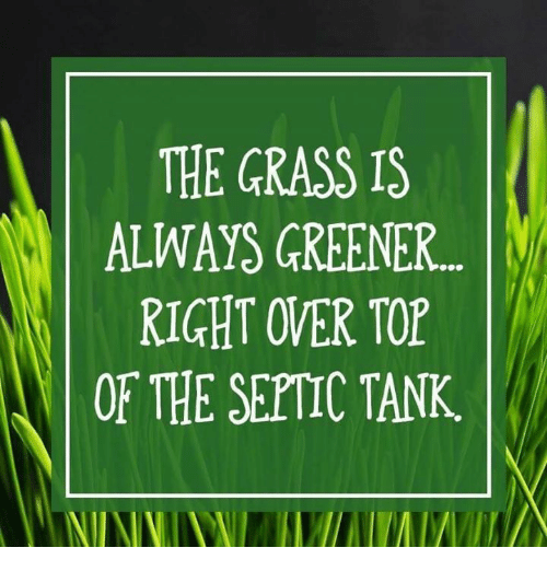 Grass Is Always Greener: THE GRASS IS  ALWAYS GREENER...  RIGHT OVER TOP  OF THE SEPTIC TANK
