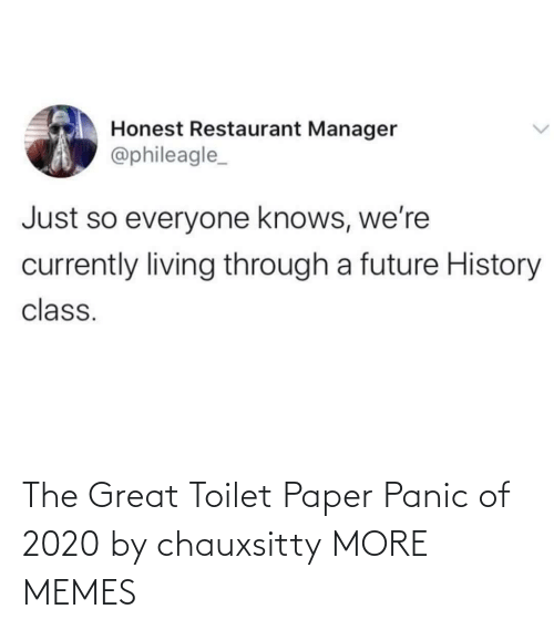 panic: The Great Toilet Paper Panic of 2020 by chauxsitty MORE MEMES