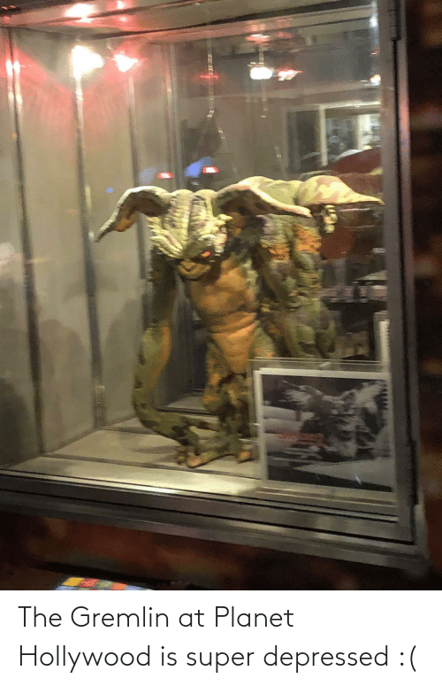 hollywood: The Gremlin at Planet Hollywood is super depressed :(