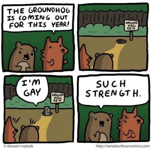 groundhog: THE GROUNDHOG  IS COMING OUT  FOR THIS YEAR!  I'm  GAY  GROUND  HO  O Stewart matzek  GROUND  H06  DEN  SUCH  STRENGTH  http://amateurhourcomics.com