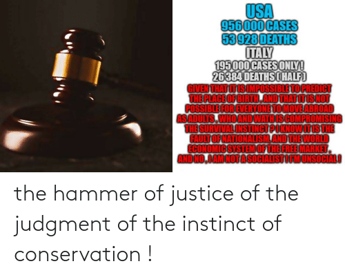 hammer: the hammer of justice of the judgment of the instinct of conservation !