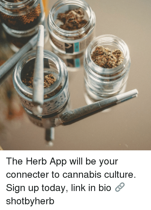 herb: The Herb App will be your connecter to cannabis culture. Sign up today, link in bio 🔗 shotbyherb