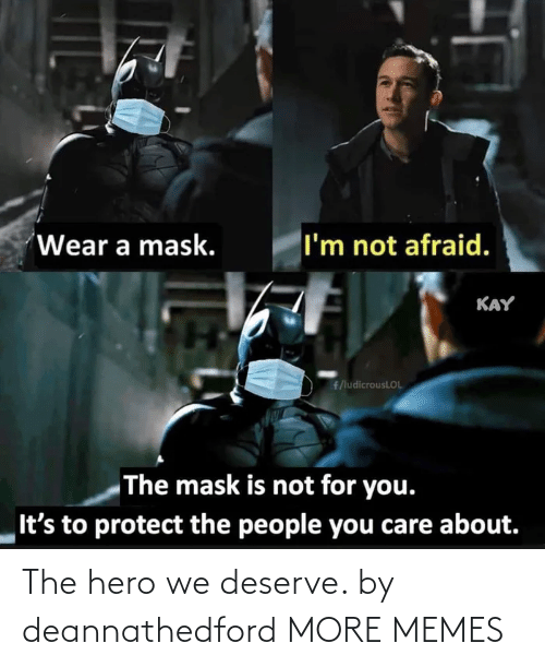 hero: The hero we deserve. by deannathedford MORE MEMES
