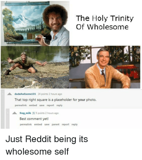 Best Comment: The Holy Trinity  Of Wholesome  dudeAwEsome101 24 points 2 hours ago  That top right square is a placeholder for your photo  permalink embed save report reply  frog milk S 9 points 2 hours ago  Best comment yet!  permalink embed save parent report reply <p>Just Reddit being its wholesome self</p>