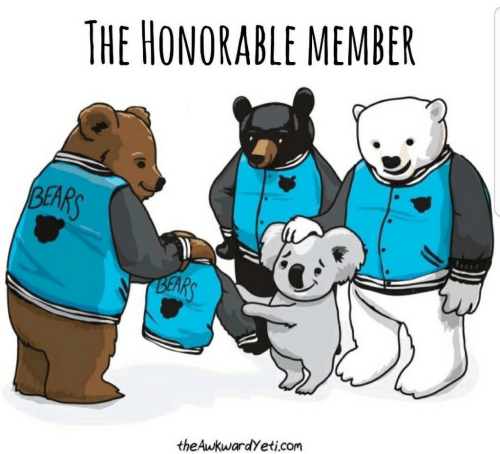 honorable: THE HONORABLE MEMBER  BEARS  BEARS  theAwkwardyeti.com
