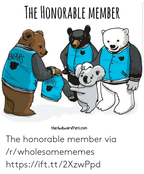 honorable: THE HONORABLE MEMBER  BEARS  BEARS  theAwkwardYeti.com The honorable member via /r/wholesomememes https://ift.tt/2XzwPpd