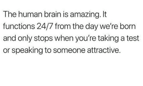 Dank, Brain, and Test: The human brain is amazing. It  functions 24/7 from the day we're born  and only stops when you're taking a test  or speaking to someone attractive.