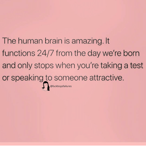 Brain, Test, and Girl Memes: The human brain is amazing.It  functions 24/7 from the day we're born  and only stops when you're taking a test  or speaking to someone attractive.  @fuckboysfailures