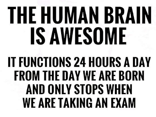 Brain, Awesome, and Human: THE HUMAN BRAIN  IS AWESOME  IT FUNCTIONS 24 HOURS A DAY  FROM THE DAY WE ARE BORN  AND ONLY STOPS WHEN  WE ARE TAKING AN EXAM