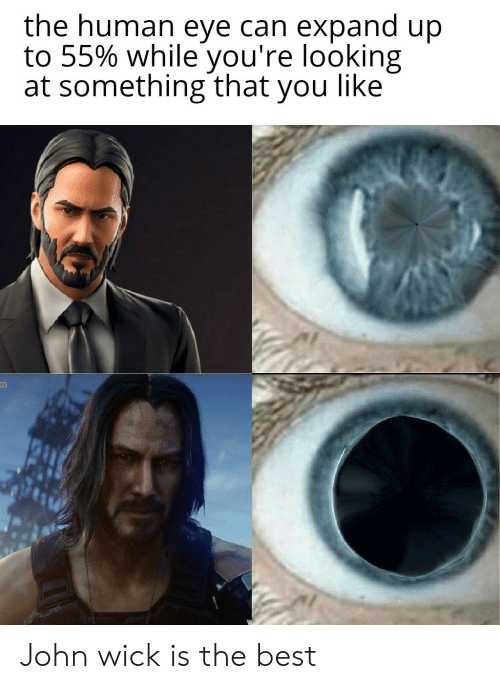 John Wick, Best, and Eye: the human eye can expand up  to 55% while you're looking  at something that you like  03 John wick is the best