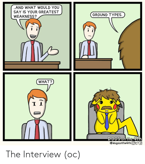The Interview: The Interview (oc)