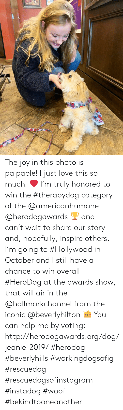 Love, Memes, and Help: The joy in this photo is palpable!  I just love this so much! ❤️    I'm truly honored to win the #therapydog category of the @americanhumane @herodogawards 🏆 and I can't wait to share our story and, hopefully, inspire others.  I'm going to #Hollywood in October and I still have a chance to win overall #HeroDog at the awards show, that will air in the @hallmarkchannel from the iconic @beverlyhilton 👑 You can help me by voting: http://herodogawards.org/dog/jeanie-2019/ #herodog #beverlyhills #workingdogsofig #rescuedog #rescuedogsofinstagram #instadog #woof #bekindtooneanother