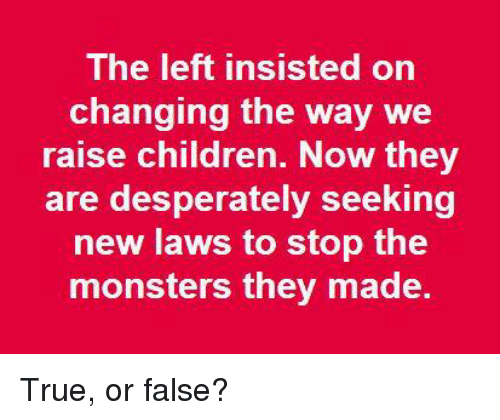Children, Memes, and True: The left insisted on  changing the way we  raise children. Now they  are desperately seeking  new laws to stop the  monsters they made. True, or false?