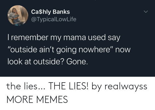 lies: the lies… THE LIES! by realwayss MORE MEMES