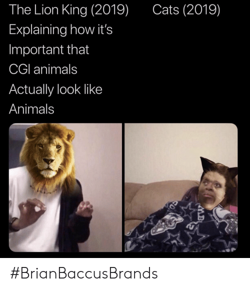 cgi: The Lion King (2019)  Cats (2019)  Explaining how it's  Important that  CGI animals  Actually look like  Animals #BrianBaccusBrands