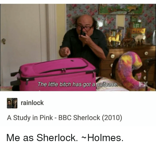 The Littl: The little bitch has got a Suitcase  rainlock  A Study in Pink BBC Sherlock (2010) Me as Sherlock.  ~Holmes.