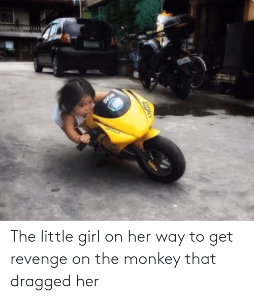 Girl: The little girl on her way to get revenge on the monkey that dragged her