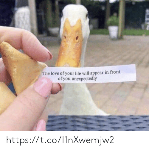 Front: The love of your life will appear in front  of you unexpectedly https://t.co/l1nXwemjw2