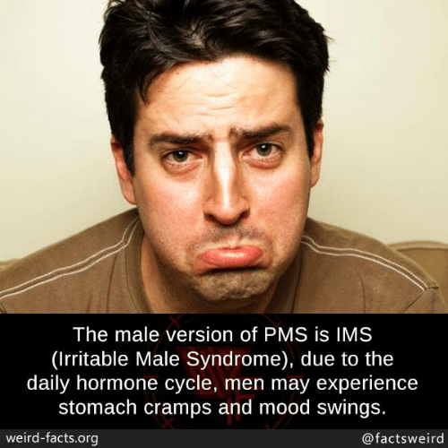 stomach cramps: The male version of PMS is IMS  (Irritable Male Syndrome), due to the  daily hormone cycle, men may experience  stomach cramps and mood swings.  weird-facts.org  @factsweird