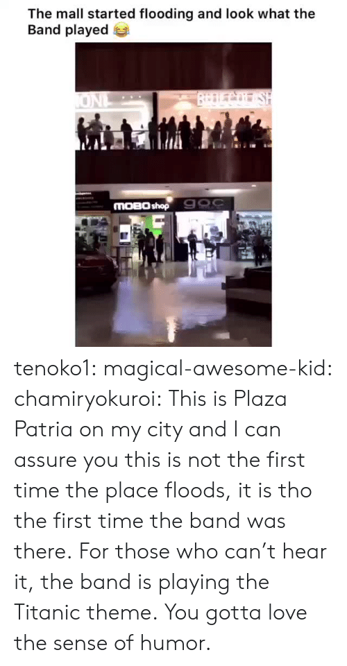 Flooding: The mall started flooding and look what the  Band played  BrDLCo SH  ONL  MOBO shop 900 tenoko1: magical-awesome-kid:  chamiryokuroi: This is Plaza Patria on my city and I can assure you this is not the first time the place floods, it is tho the first time the band was there.  For those who can't hear it, the band is playing the Titanic theme.  You gotta love the sense of humor.
