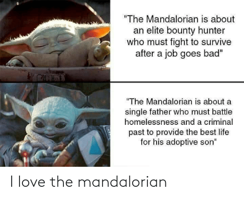 "A Single: ""The Mandalorian is about  an elite bounty hunter  who must fight to survive  after a job goes bad""  ""The Mandalorian is about a  single father who must battle  homelessnesss and a criminal  past to provide the best life  for his adoptive son"" I love the mandalorian"