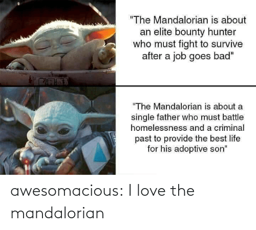 "hunter: ""The Mandalorian is about  an elite bounty hunter  who must fight to survive  after a job goes bad""  ""The Mandalorian is about a  single father who must battle  homelessnesss and a criminal  past to provide the best life  for his adoptive son"" awesomacious:  I love the mandalorian"