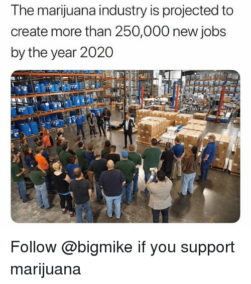 Jobs, Marijuana, and Trendy: The marijuana industry is projected to  create more than 250,000 new jobs  by the year 2020 Follow @bigmike if you support marijuana